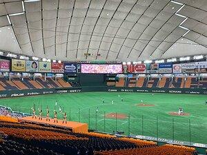 プロ野球では、叫んだっていいのだ。観客のいない東京ドームで「あっ!」。