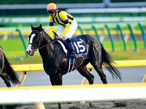 有力ジョッキーが猛勉強中。初の外国籍JRA騎手誕生へ。~ルメール、デムーロが常時参戦か~