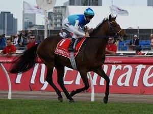 アドマイヤラクティの死から6年 メルボルンCで崩れ落ちた優駿を忘れない…今年もまた同レースで悲劇が