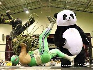 "DDTでササダンゴがパンダと激突!パワポの名手が語る""勝利""の定義。"