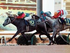 """""""オグリの再来""""は夢のまた夢。競走馬セリ市場の光と影。~中央と地方の格差は開く一方~"""
