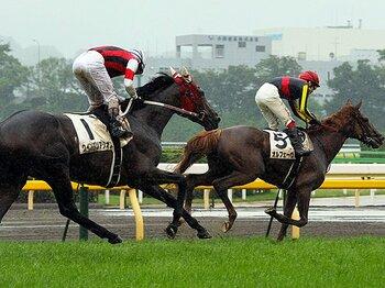 """注目はオルフェに再び挑む""""あの馬""""。スターホース続々欠場の有馬を読む。<Number Web> photograph by Yuji Takahashi"""