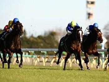 東西ともに役者が揃った、牡馬クラシック戦線。~関東の注目馬はJリーガー!?~<Number Web> photograph by Masakazu Takahashi