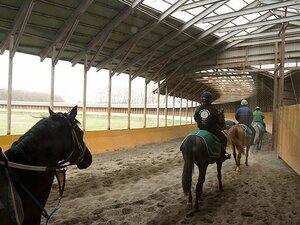 競馬界で一人勝ちの超巨大牧場。ノーザンファームの内部に潜入!