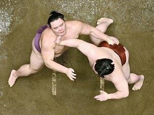 """久々の本場所で""""相撲勘""""は?元武蔵丸「今場所はケガに注意!」。"""