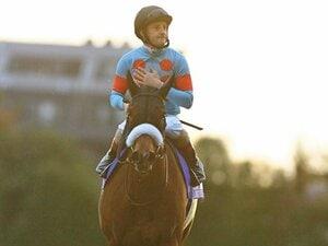 """[""""世紀の対決""""の記憶]アーモンドアイ「史上最強牝馬、有終のサンセット」"""