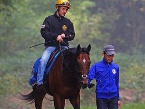 凱旋門賞は歴史的名牝の独壇場か?サトノ×池江厩舎の調整力に期待。