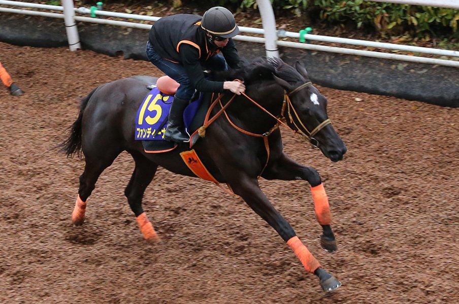 ディープ以来の無敗皐月賞馬は牝馬!?ファンディーナは素質だけで3連勝中。<Number Web> photograph by Yuji Takahashi