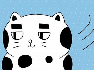 もしもラグビーボールがネコだったら……。『ニャンウルブズ』スペシャル動画、毎週更新中!