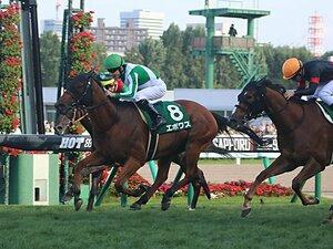 藤沢調教師は競馬界を変えてきた。キーンランドCとエポワスに思う。