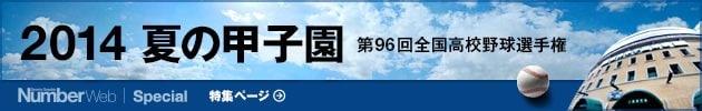 2014 夏の甲子園 ~第96回全国高校野球選手権大会~