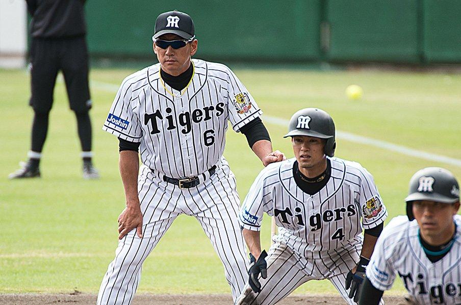 秋季キャンプで選手と共に汗を流す、阪神タイガースの金本第33代監督。