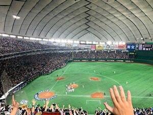 「野球の日本代表」が定着してきた。プレミア12で感じた成熟と真剣勝負。