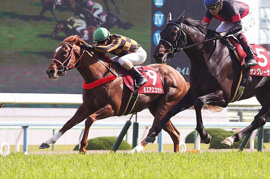 競走馬は連闘でこそ能力を発揮する!?安田記念注目の超良血馬と矢作師。<Number Web> photograph by NIKKAN SPORTS