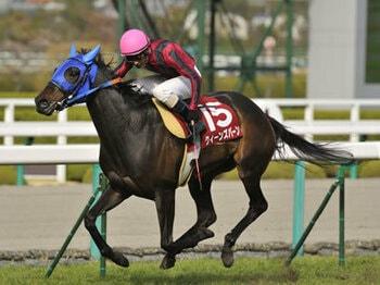 【阪神牝馬S】とにかくサンデー系の天国!そして…<Number Web>
