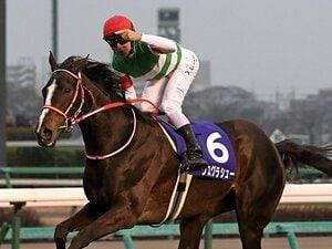 有馬記念を完勝したリスグラシュー。アーモンドアイとの差は10馬身以上。