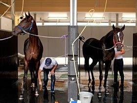 預託料軽減で懸念される、デフレスパイラルの可能性。~競馬界に押し寄せる不況の影~