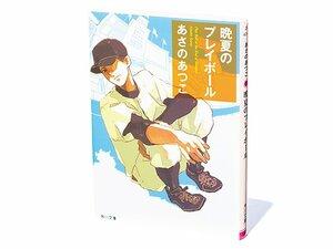 """『晩夏のプレイボール』美しく端正な文体で描かれる、""""野球のある人生""""の物語。"""