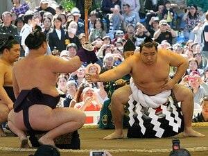"""白鵬が怖いのは「自分にないもの」。新横綱・鶴竜の""""日本語と人品""""。"""