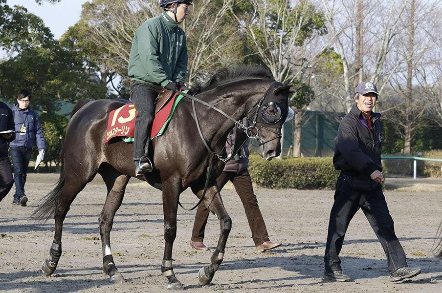 死角がどうにも見当たらない……。桜花賞はソウルスターリングの一強。<Number Web> photograph by Kyodo News