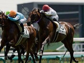 引退しても終わらない、競走馬たちの第二の競争。<Number Web> photograph by Kiichi Yamamoto