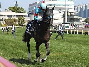 宝塚記念に揃った8頭のGI馬たち。勝者が得る「現役最強」への挑戦権。