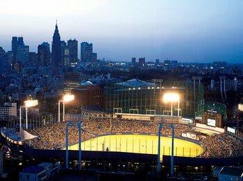 神宮球場三塁側スタンドの向こうには新宿の高層ビルがそびえる。