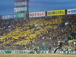 どれだけ負けても、野球は楽しめる。阪神ファンの人生が幸せな理由。