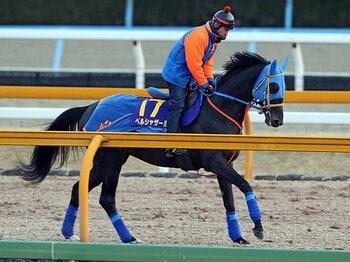 ドバイ前哨戦のフェブラリーステークス。「二強」に割って入る馬は現れるか?<Number Web> photograph by Yuji Takahashi
