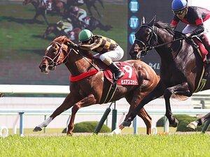 競走馬は連闘でこそ能力を発揮する!?安田記念注目の超良血馬と矢作師。