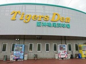 """鳴尾浜と甲子園の、はしご観戦!""""平成最後の夏""""を堪能する野球旅。"""