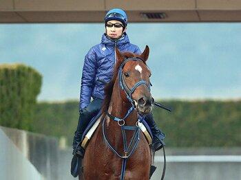 砂のサイレンススズカ、再来なるか?フェブラリーS初の連覇目指す快速馬。<Number Web> photograph by Yuji Takahashi