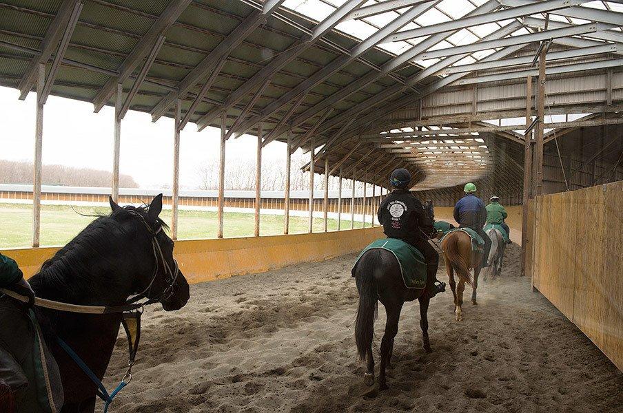 競馬界で一人勝ちの超巨大牧場。ノーザンファームの内部に潜入!<Number Web> photograph by Asami Enomoto