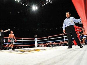 内山高志、TKO勝ち。両目とも腫れ、視界がない三浦隆司が「もう無理」。