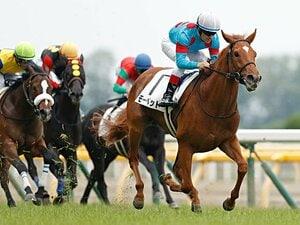 噂の大物牝馬にディープ級の末脚も。ノーザンファーム勢3頭の素質が凄い。