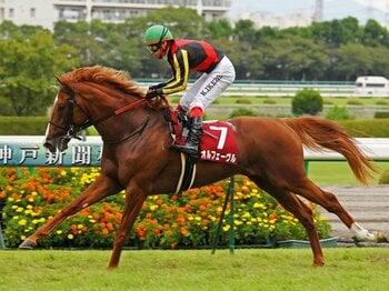 史上7頭目の3冠馬へ、オルフェーヴルの充実。~偉業達成にスキはないのか?~<Number Web> photograph by Yuji Takahashi