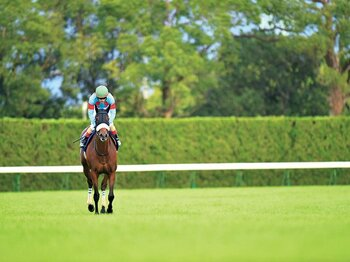 JCのアーモンドアイに死角はあるか。過去から浮かぶ優勝馬の条件は……。<Number Web> photograph by Masumi Seki