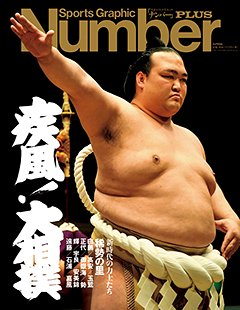疾風!大相撲~新時代の力士たち~