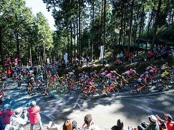 8万人が宇都宮郊外の山中に集結!自転車ロードレースの国内最高峰。<Number Web> photograph by Sonoko Tanaka