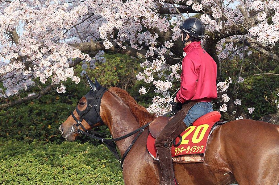 桜花賞にかかる「61年ぶりの偉業」。無敗+2歳女王のライラック出陣。<Number Web> photograph by Yuji Takahashi