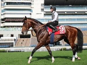 史上初、5つのGIの馬券が買える日。香港ではムーアが4冠の可能性も。