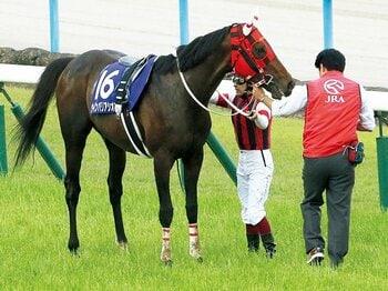 世が世ならダービーも……。無冠馬との数奇な出会い。~ウインバリアシオン引退に寄せて~<Number Web> photograph by NIKKAN SPORTS