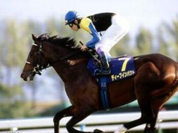 ディープインパクト有馬記念参戦の理由。<Number Web> photograph by Shigeyuki Nakao
