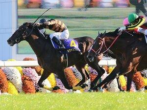 キタサンブラック菊花賞制し7戦5勝。北島三郎、馬主歴53年目のGI初戴冠。