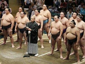 相撲の五輪期間中の特別興行は、世界へのビジネスチャンスになる!