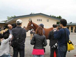 """""""My Horse in my pocket""""~ユニオンオーナーズクラブの特色~"""