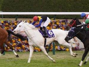 「ソダシはいい意味でクレイジーだね」「僕は彼女のファンですよ」 世界初の白毛GI馬に海外ジョッキーが寄せた声