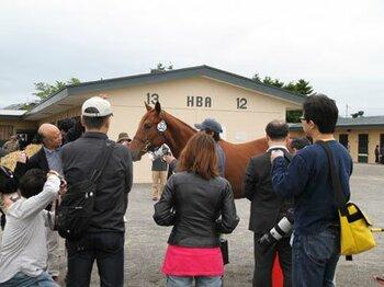 """My Horse in my pocket""~ユニオンオーナーズクラブの特色~<Number Web>"