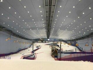 1年じゅうスキーができる国を作る。 皆川賢太郎が考える屋内施設の価値。