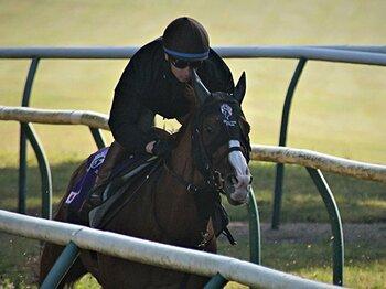 日本馬が久々のキングジョージ出走。シュヴァルグランがエネイブルに挑む。<Number Web> photograph by Satoshi Hiramatsu